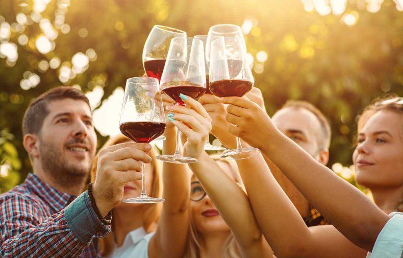 Hire Wine Tour Yarra Valley